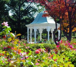 Rose Garden copy