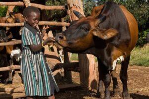 elanco-animal-health